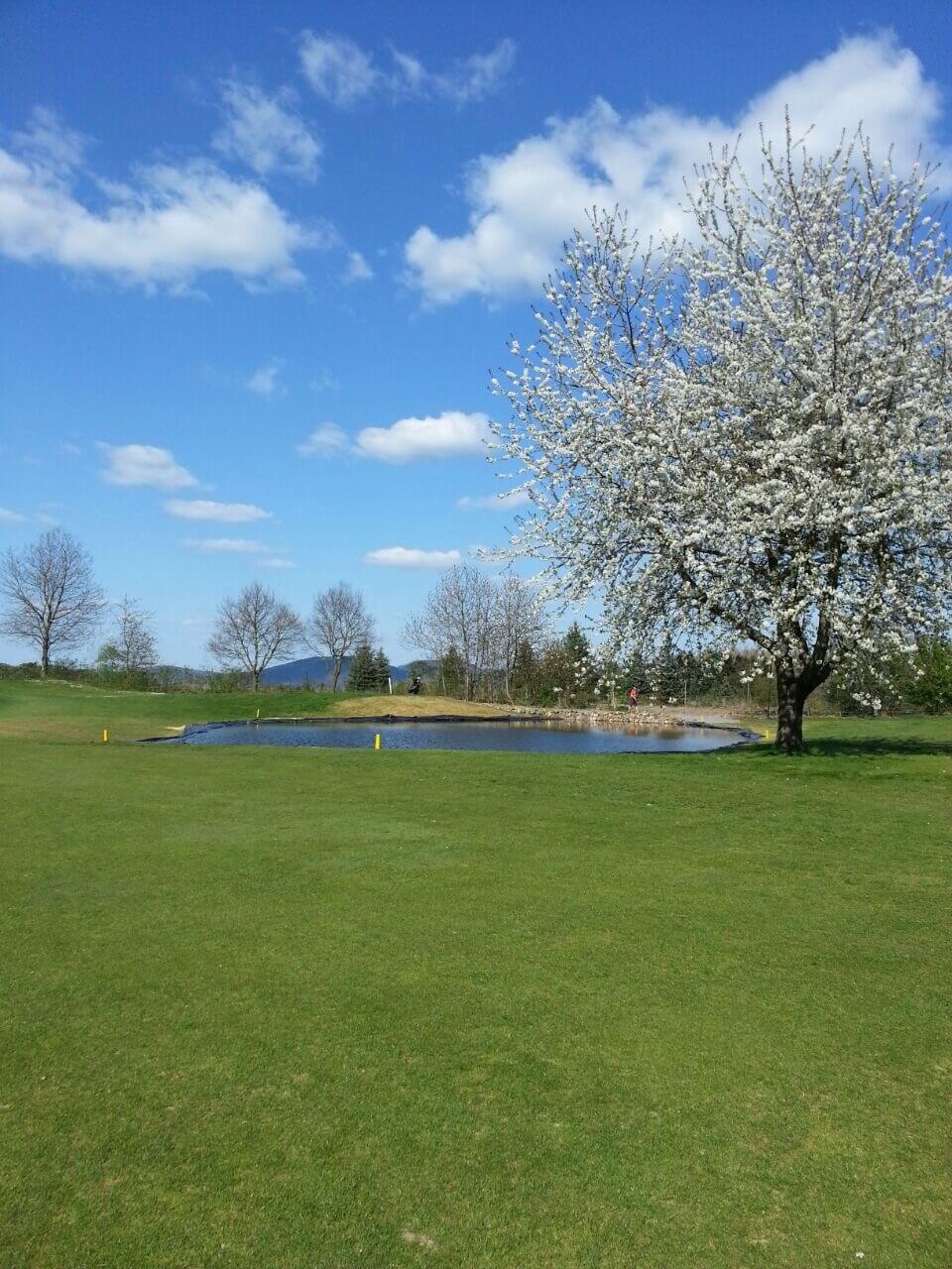 golfplatz1-4